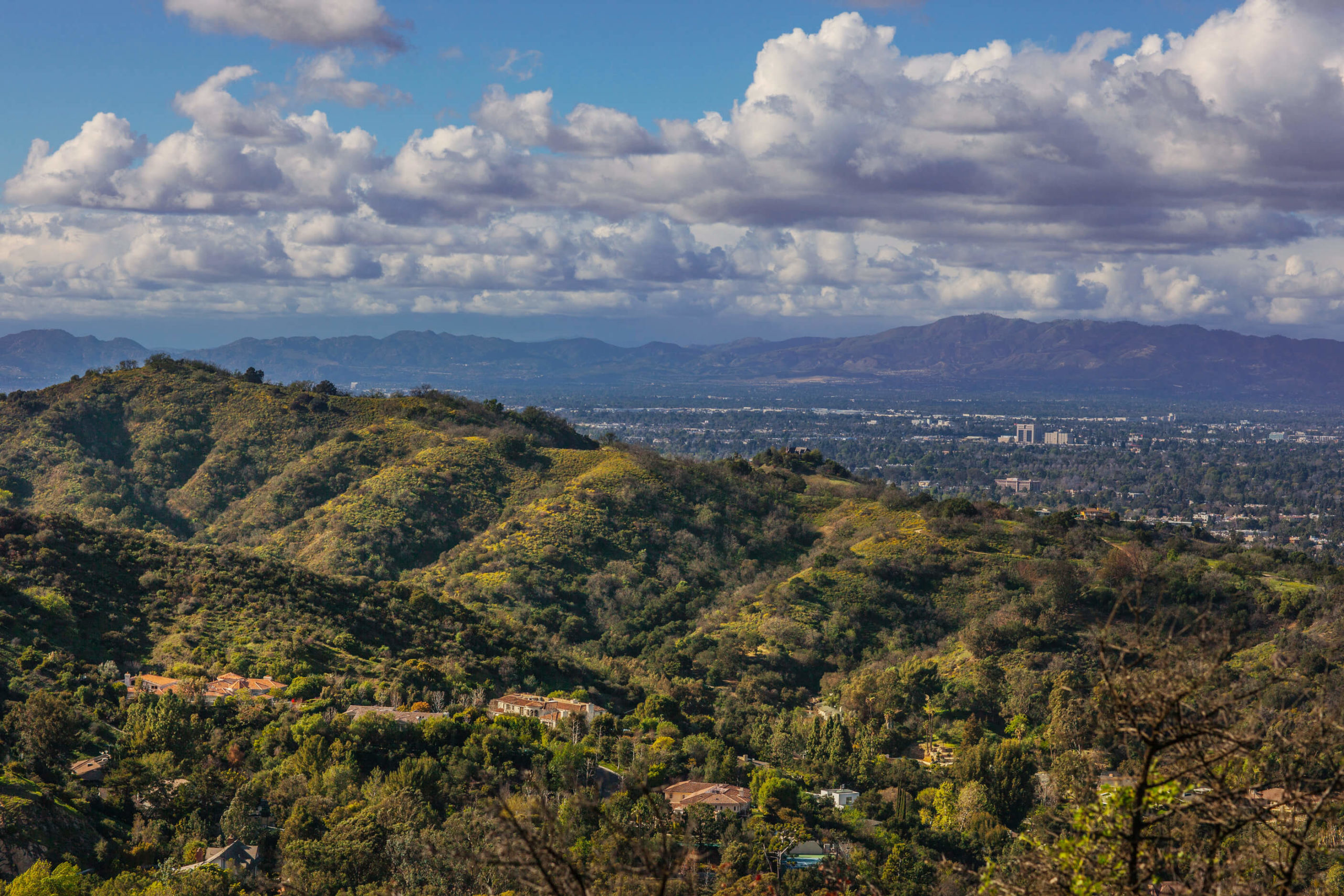 Top Los Angeles Scenic Drives